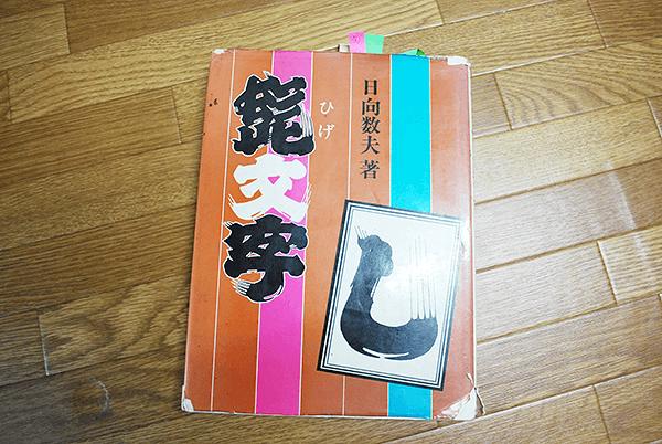 半纏、デザイン、参考図書、ひげ文字