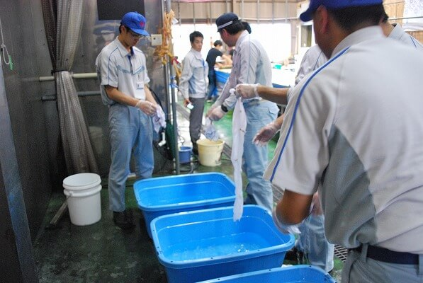 洗い 染物体験