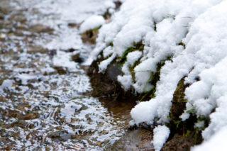 北国の清らかな水で洗う